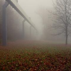 H-Bahn (jpk.) Tags: 2010 campus canoneos7d dortmund hbahn nebel november ruhrgebiet tudortmund vormittag unterwegs herbst laub herbstlaub kahl morgens morgen wiese grün trüb ©janphilipkopka ef235mm campusnord