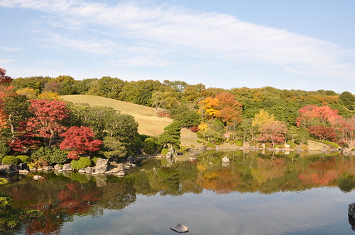 2010.11.19_万博公園・太陽の塔_113