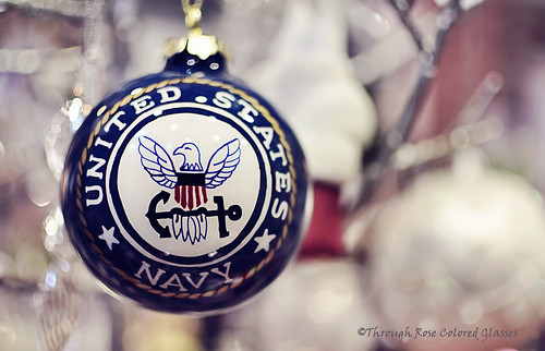 Navy ornament, full edit