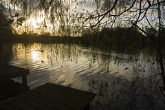 Morning Abbey (photo_dan2010) Tags: morning lake sunrise yahoo wigan waker upholland abbeylakes yahoo:yourpictures=waterv2 yourpictureswaterv2