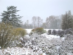 Winter Scene from Soest