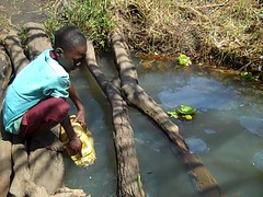 Young boy collects dirty water