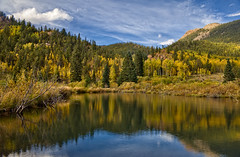 Autumnal Beaver Pond (Fort Photo) Tags: autumn sky mountain lake mountains reflection fall nature forest landscape rockies pond nikon colorado rocky co aspen autumnal hdr pne teller 2010 goldcamproad goldcamp photomatix nikon1735 d700 oloneo