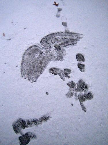 snow cherub of boots