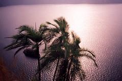 Kamerun – Po stopách Geralda Durrella<br>4. díl – Nyos, jezero smrti