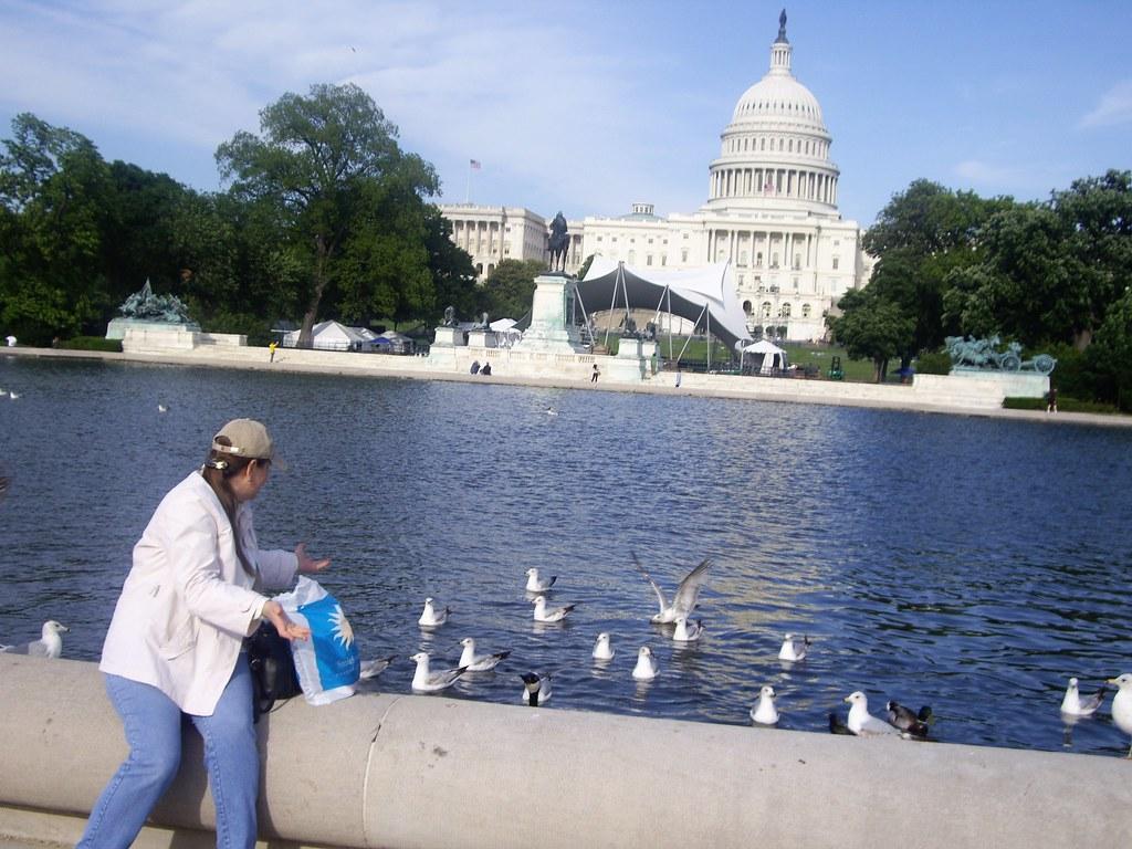 Вашингтон 234