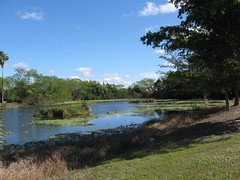 Ft Myers Water Views, South Fort Myers (FtMyersMarketing) Tags: water florida canals views ftmyers creeks fortmyers scenicviews