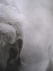 Pietro Citati, Leopardi, Mondadori 2010; art dir.:Giacomo Callo, graph. designer:Cristina Brazzoni; alla q. di cop.: ritratto fotogr. dell'autore, ©Manuela Fabbri; q. di cop. (part.), 4