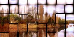 WINTER in ABSTRACT (Lani Elliott) Tags: nature naturephotography lanielliott abstract lines designs landscape view scene scenic derwentriver river riverderwent derwentvalley scenictasmania trees winter wintercolours reflection reflections australia tasmania wow gorgeous