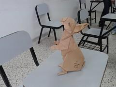 Rabbit - Ronald Koh (javier vivanco origami) Tags: rabbit ronald koh javier vivanco origami ica peru facultad de medicina veterinaria y zootecnia unica universidad san luis gonzaga