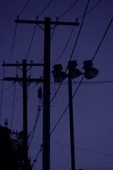 twilight telephone poles (adam_mcintosh) Tags: lighting blue sky blackandwhite bw colors night streetlights silhouettes telephonepoles lightandshadow summerevenings
