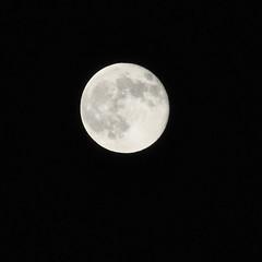 My Obligatory Full Moon Shot (Jenn (ovaunda)) Tags: light moon night square utah nikon 70300mm nigh cedarcity d90 nikonafnikkor70300mmf456g jennovaunda ovaunda