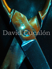 (David Cucaln) Tags: light macro 35mm olympus scissors fineartphotography tijeras e510 digitalcameraclub cucalon tissores davidcucalon