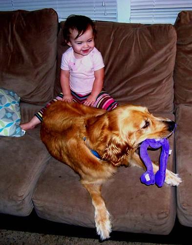 doodle&dog