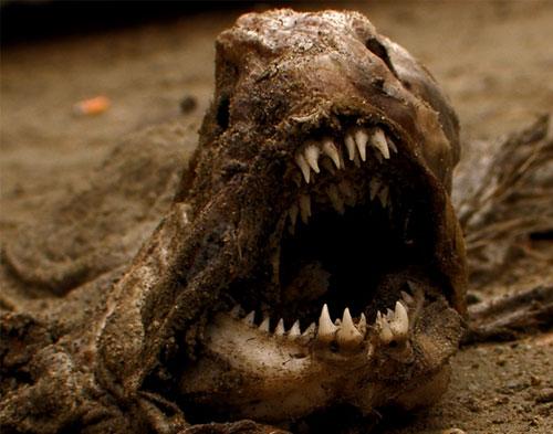 Monstruos de los Ríos