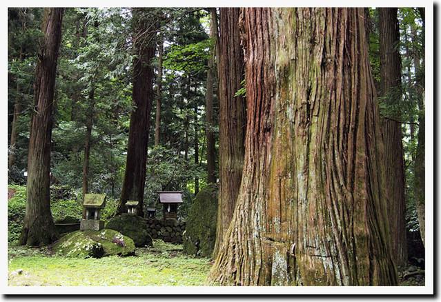 100627_103852_塩野神社
