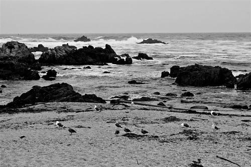 Monterey Sept 2010 330
