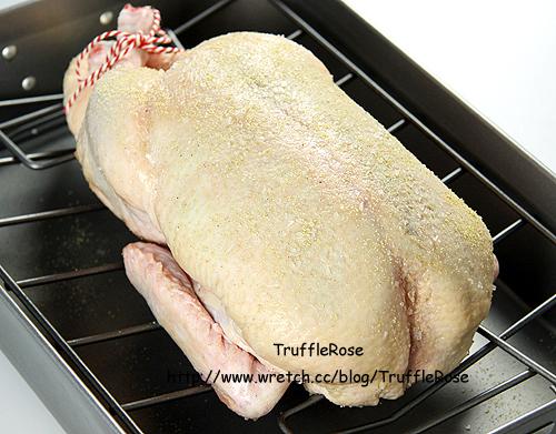 鴨肉亂吃。無緣的烤全鴨-100908