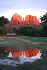 Sedona Reflections (Nevada100) Tags: arizona reflection puddle mirror sedona redrock cathedralbutte