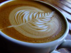 Early Rosetta (On the mountain at dawn) Tags: old art coffee found milk free silvia espresso steamed latte pour barista rosetta rancilio