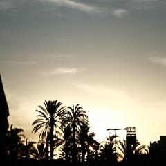 ([ZicoCarioca]) Tags: photography photo foto photographie image images photograph carioca zico imagery zicocarioca