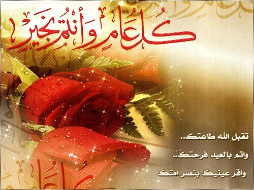 افتتاح شبكة أنصار محمد الله