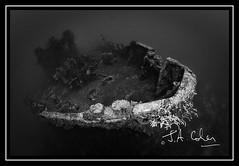 2010-8 Aruba-1265-2.jpg