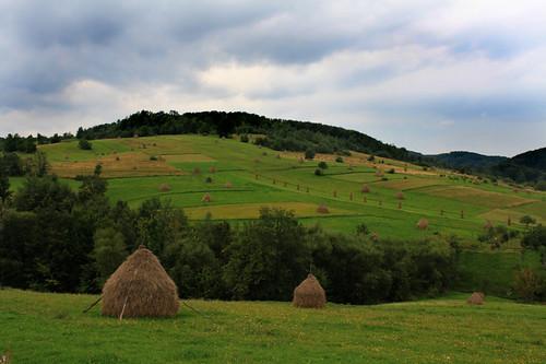 Transilvania3