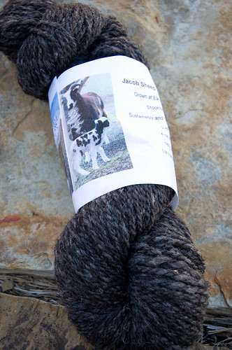 utah raised and made yarn from jacob sheep