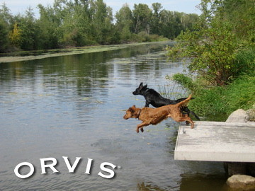 Orvis Cover Dog Contest - Lee and Bear