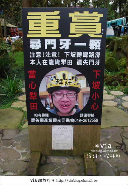 【南投】台灣,妖怪出沒?!來溪頭妖怪村-松林町抓妖吧!23