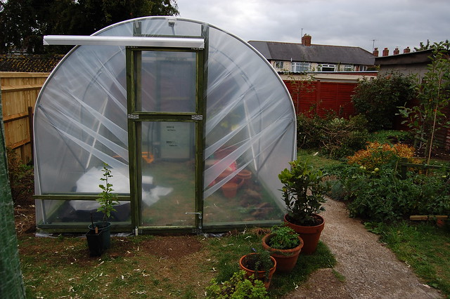 The front of the polytunnel