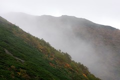 色付き始めた円山の斜面