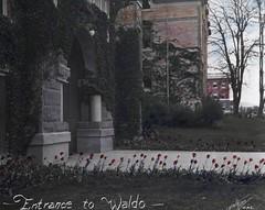 Waldo Hall