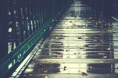(pavicha) Tags: rain automne pluie pont 1785mm leafs feuilles canoneos50d