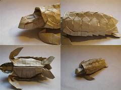 Loggerhead Sea Turtle Details (shuki.kato) Tags: sea origami turtle reptile loggerhead satoshi kamiya complec