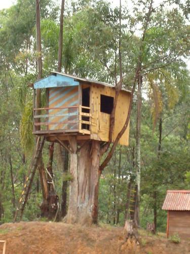 Casinha da árvore