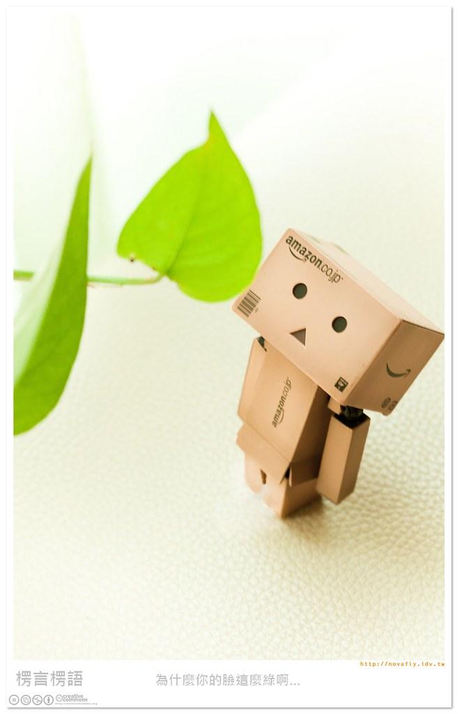[楞言楞語]綠葉