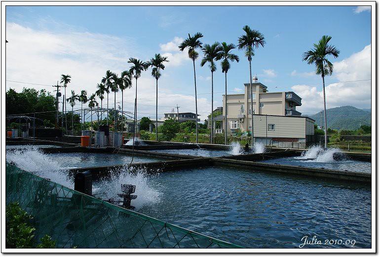 八甲魚場 (2)