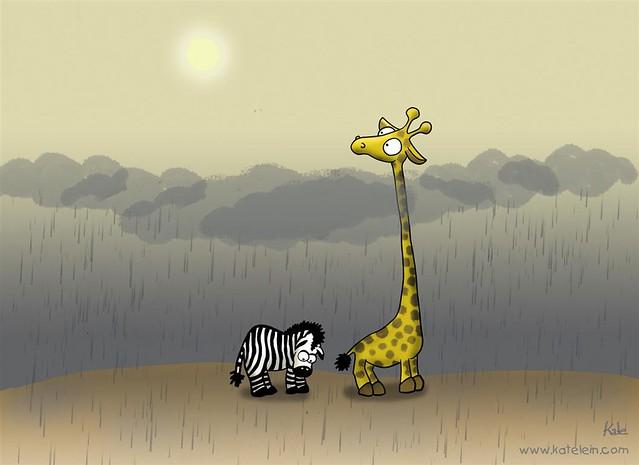 Zebra und Giraffe