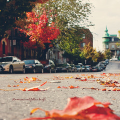 Memories and fallen leafs (greenicadesign) Tags: street red house fall montreal memories leafs