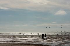Quend Plage Les Pins (Daniel Schoumakers) Tags: sky france clouds sable ciel nuages plage baiedesomme quendplagelespins danielschoumakers