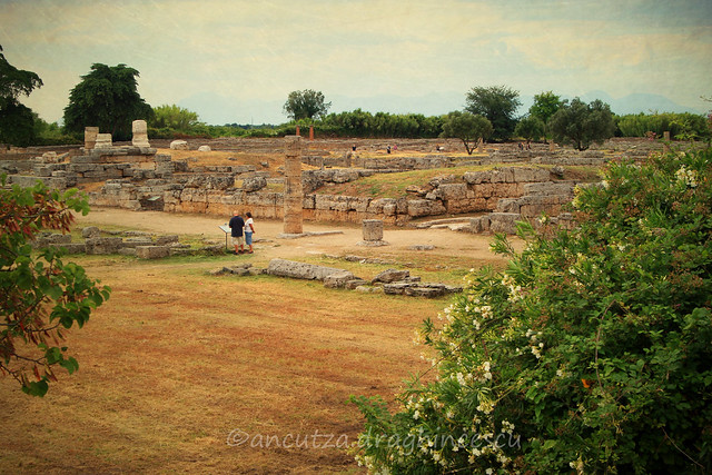 foto delle rovine di Paestum Italia