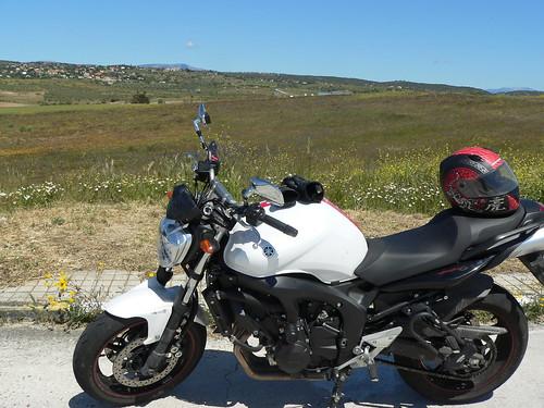 Almorox y Sierra de Gredos 5047371795_91b8bf0de8