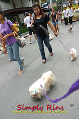 Pet Blessing at Eastwood City 07