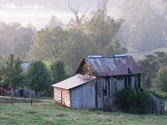 Misty Morning on the Farm 2 (Universal Pops) Tags: morning light sun mist field fog rural landscape virginia day farm country rustic shed scene pasture pastoral tinroof bucolic outbuilding tistheseason charlottecounty bej platinumphoto platinumheartaward ntwica