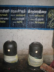 Star Lingams 2