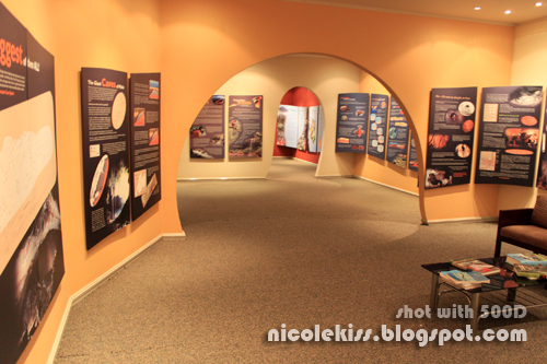 interior of mulu discovery centre