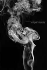 ♥ (NOURA - alshaya ♔) Tags: canon d iso 100 500 2010 2011 دخان نورا كانون نوره ابيض واسود خلفيه احادي احاديه نويروا nouero