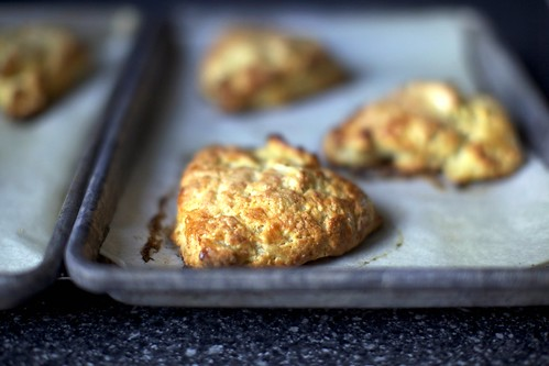 apple and cheddar scones | smitten kitchen